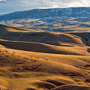 Rolling Foothills And The Bighorn Mountains Poster