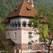 Romanian Villa Poster