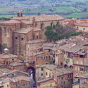 Rooftops Of Siena 2 Poster