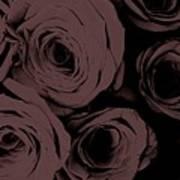 Rosa D'amore Deep Mauve Poster
