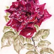 Rose 1 Poster