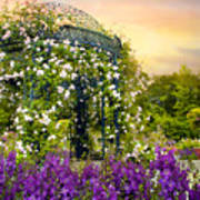 Rose Arbor At Sunset Poster