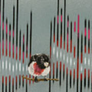 Rose Breasted Grosbeak And Song Poster