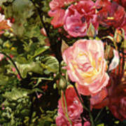 Rose Garden Poster by Teri Starkweather