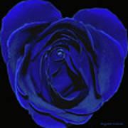 Rose Heart In Blue Velvet Poster