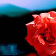 Rose Lake Poster