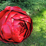 Rose Sculpture Poster