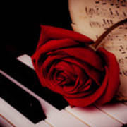Rose With Sheet Music On Piano Keys Poster