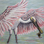 Roseate Spoonbill On The Foggy Laguna Madre Poster
