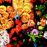 Roses Bouquet Poster