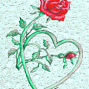 Roses Hearts And Lace Flowers Design  Poster