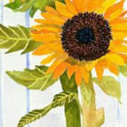 Rosezella's Sunflowers II Poster