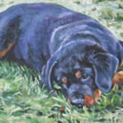 Rottweiler Puppy Poster