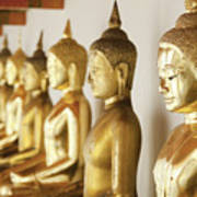 Row Of Buddhas Poster