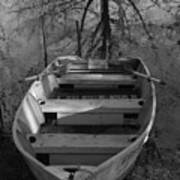Rowboat And Tree Poster