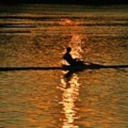 Rowing At Sunset 3 Poster