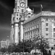 Royal Liver Buildings_beatle Country Poster