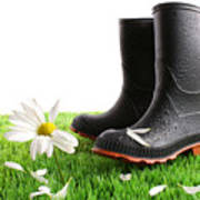 Rubber Boots With Daisy In Grass Poster