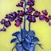 Ruby Red Orchids Poster by Sheila Tajima