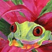 Ruby The Red Eyed Tree Frog Poster
