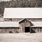 Ruckle Barn Poster