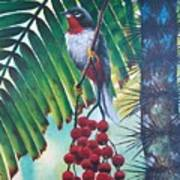Rufous-throated Solitaire Poster