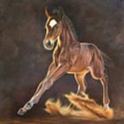 Running Foal Poster