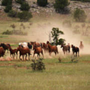 Running Herd Poster