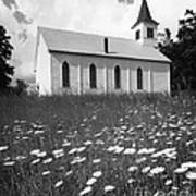 Rural Church In Field Of Daisies Poster
