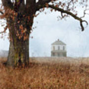 Rural Farmhouse And Large Tree Poster