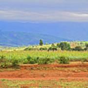 Rural Landscape In Tanzania Poster