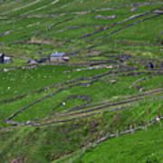 Rural Landscape On Dingle Peninsula Poster