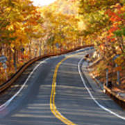 Rural Road Running Along The Maple Trees In Autumn 2 Poster