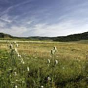 Rural Scenic Landscape Poster