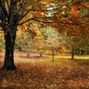 Rustic Autumn  Poster