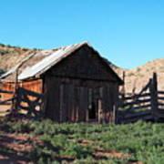 Rustic In Colorado Poster