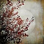 Rustic Moon Poster