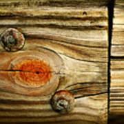 Rustic Wood Poster