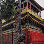 Sacred Millennium Tree Trunk Poster