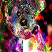 Sad Dog Poster by James Thomas