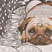 Sad Pup Poster