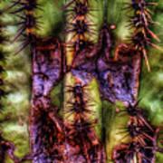 Saguaro Detail No. 30 Poster