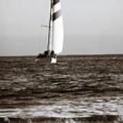 Sail Boat Coming Ashore 2 Poster