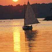 Sailboat And Sunset, South River Poster