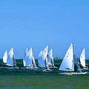 Sailboat Championship Racing 1 Poster