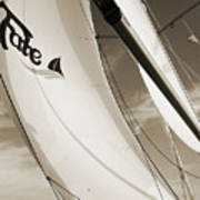 Sailboat Sails And Spinnaker Fate Beneteau 49 Charelston Sc Poster