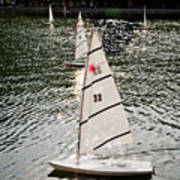 Sailboats In Central Park Poster