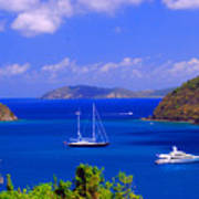 Sailboats In St. John's Poster