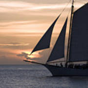 Sailing In Key West At Sunset Poster