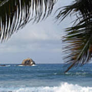Saint Lucia Palm Tree Small Rock Caribbean Flowing Poster